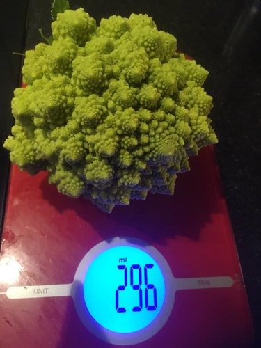 Romanesco (Broccoli uit Rome)