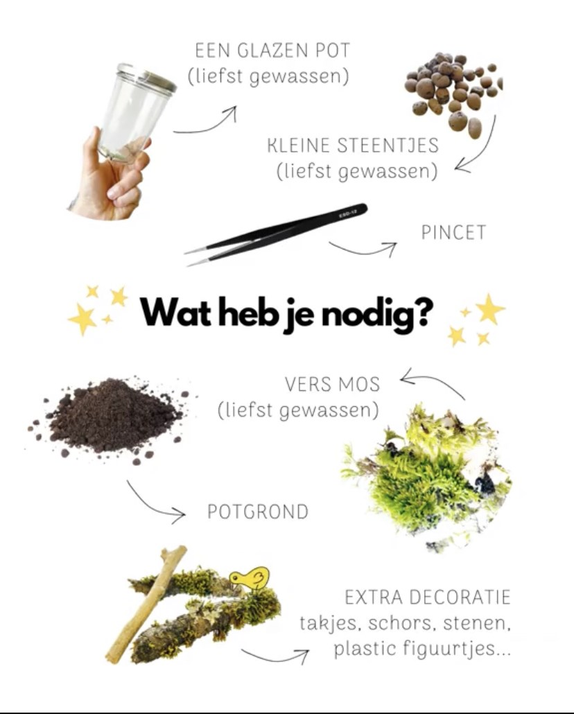 Ecotuintje-in-een-pot